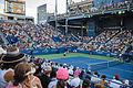 2015 US Open Tennis - Tournament - Donald Young (USA) def. Viktor Troicki (SRB) (22) (21206135571).jpg