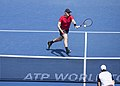 2017 Citi Open Tennis 20170805-0087 (36360381146).jpg