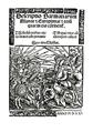 2 Sarmatii 1521 (1).png