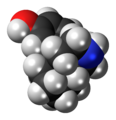 3-Hydroxymorphinan molecule spacefill.png