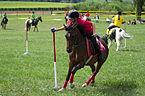 4ème manche du championnat suisse de Pony games 2013 - 25082013 - Laconnex 46.jpg