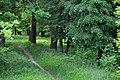 46-106-5001 Drohobych Khmelnytski Park RB 18.jpg