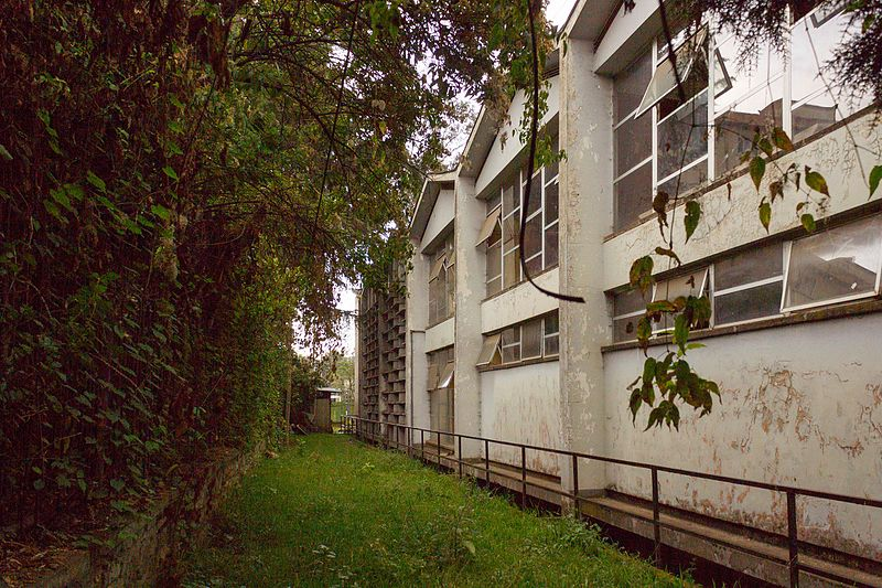 File:6 Faculty Of Pharmacy Sports and Assembly Hall Rear Elevation.jpg