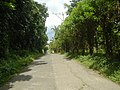 9759Poblacion III Del Carmen, Alaminos, Road 05.jpg