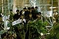 9th Death Anniversary of Ruhollah Khomeini at mausoleum - 4 June 1998 05.jpg