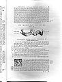 A. Vesalius, De humani corporis fabrica... Wellcome L0027058.jpg