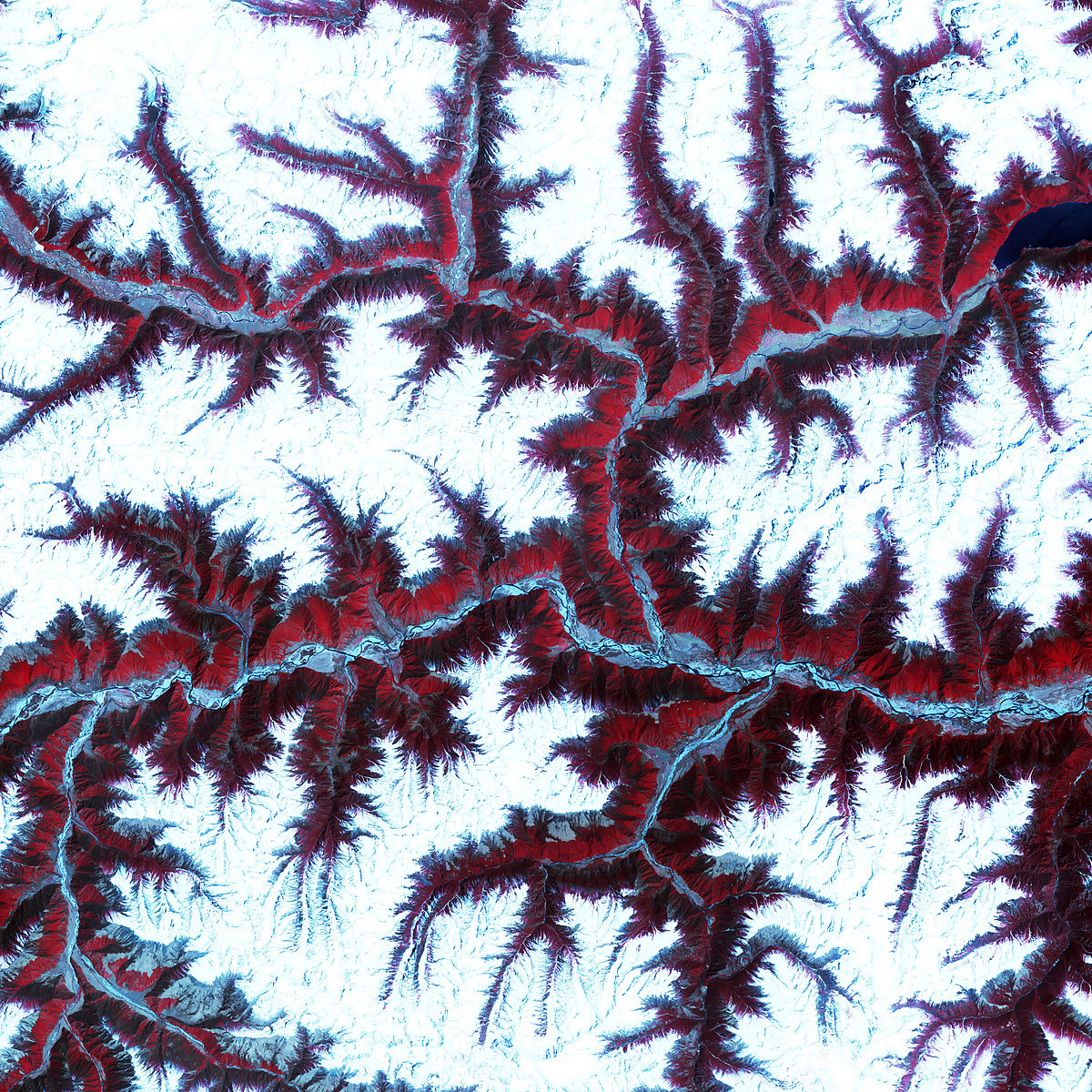 ASTER Views the Himalaya.jpg
