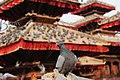 A Nepali Architect pigeon In Basantapur Nepal.jpg