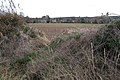 A gap in the hedge by the B4115 - geograph.org.uk - 1597826.jpg
