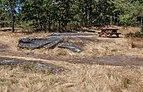 A site with a table at a campsite in Ruckle Provincial Park,, Saltspring Island, British Columbia, Canada 03.jpg