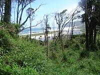 Abtao-Parque Nacional Chiloé.jpg