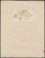 Acara filamentosa - 1798-1876 - Print - Iconographia Zoologica - Special Collections University of Amsterdam - UBA01 IZ14000077.tif