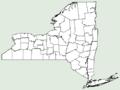 Achillea millefolium var nigrescens NY-dist-map.png