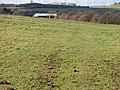 Across the field - geograph.org.uk - 1727255.jpg