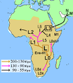 African Mitochondrial descent.PNG