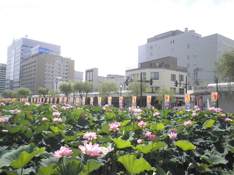 File:Akita City Sensyu Park1.jpg