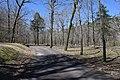 Albert Pike Recreation Area.jpg