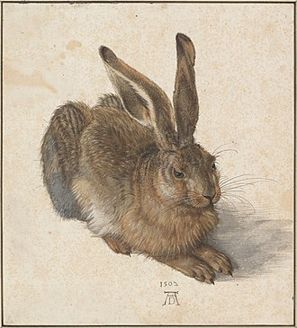 Watercolor painting - Albrecht Dürer, Young Hare, 1502, watercolor and body color, Albertina, Vienna