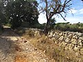 Albufeira, Country lane with dry stone wall in Enxertia 16 October 2016.JPG