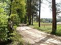 """Aleja uz """"Austriņiem"""" - panoramio.jpg"""