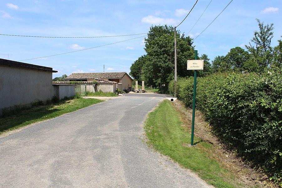 Allée en Verdet, Saint-Cyr-sur-Menthon.