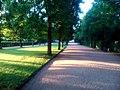 Alley at sunset - Flickr - Stiller Beobachter.jpg