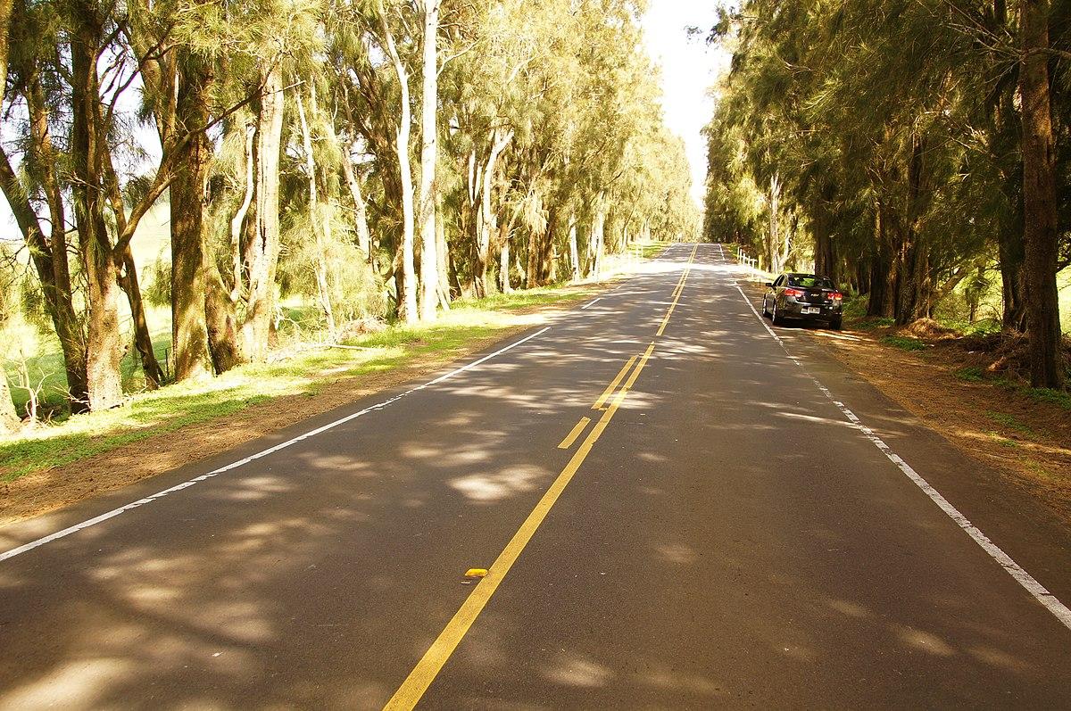 kohala mountain road wikipedia