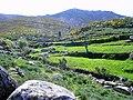 Alvoco da Serra - paisagem rural.jpg