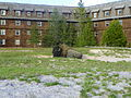 American Bison Behind The Old Faithful Inn at Yellowstone National Park.JPG