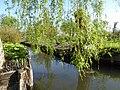 Amiens canotage dans les hortillonnages (3).JPG