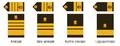 Amiraalien arvomerkit.png