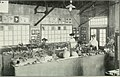 Among School Gardens (1911) (14773806975).jpg