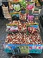 Amsterdam Centrum - Tulip Bulb Open Air Marketplace.jpg