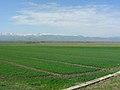 Anatolische Hochebene östlich von Erzurum (39484838835).jpg