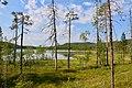 Angsjön, Björnlandet 2.jpg