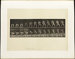 Animal locomotion. Plate 318 (Boston Public Library).jpg