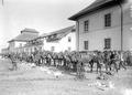 Anpassen des Geschirrs an die Pferde im Zeughaus Lyss - CH-BAR - 3238467.tif
