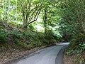 Anstie Lane, Coldharbour, Surrey - geograph.org.uk - 1404638.jpg
