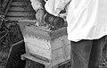 Apiculteurs - Installant du sirop sur un nourisseur - 6.jpg