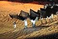 Arab Games 2011 Opening Ceremony (6498187709).jpg