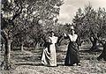Arlésiennes dansant la farandole sous les oliviers.jpg