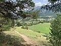 Ascension du Mont-Dauphin, paysage (juillet 2020).jpg