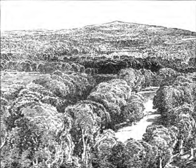 Ashdown Forest, from East Grinstead.png
