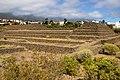 At Tenerife 2020 510.jpg
