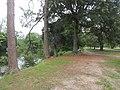 Audubon Park New Orleans St Charles Side 3 July 2020 20.jpg