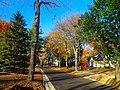 Autumn Colors in Maple Bluff - panoramio.jpg