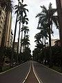 Avenida Brasil - BH - panoramio.jpg