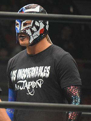 Destruction (2016) - Bushi, who captured the IWGP Junior Heavyweight Championship in the main event of Destruction in Tokyo