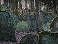 Bad Rappenau - Heinsheim - Jüdischer Friedhof - Grabsteine im Gegenlicht 4.jpg