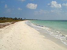 Photo de la plage de sable de Bahia Honda Key.